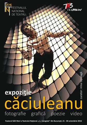 afis-expo-caciuleanu-fnt-2016